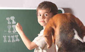 boy teaching dog
