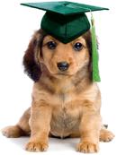 pup graduation